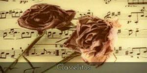 Poesía de una flor